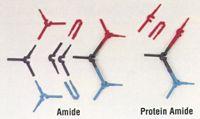 Kit #15b -Protein